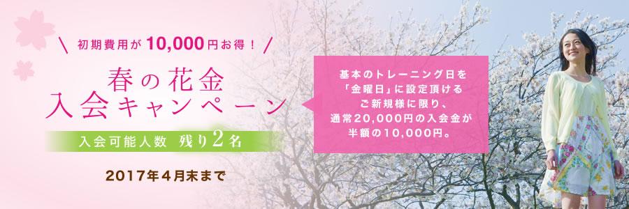 春の花金キャンペーン
